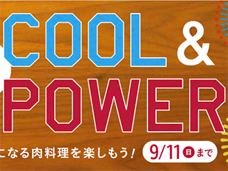 summercoolpower2016